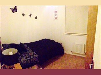 EasyRoommate UK - Lovely room to rent, Bonnyrigg  - Bonnyrigg, Edinburgh - £400