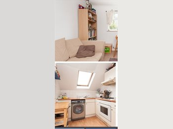 EasyRoommate UK - 2 bed flat in Queen's Park  - Kemp Town, Brighton and Hove - £850