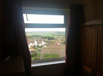 EasyRoommate UK - single room to let - Eastbourne, Eastbourne - £290