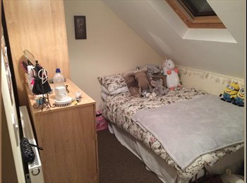 EasyRoommate UK - One attic bedroom to let straight away! - Cathays, Cardiff - £315