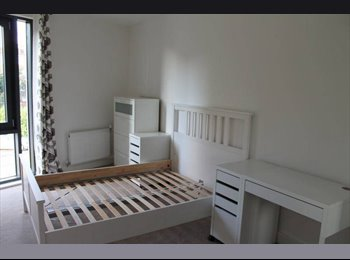 EasyRoommate UK - Large double room available to rent in 2 bed flat - North Woolwich, London - £750