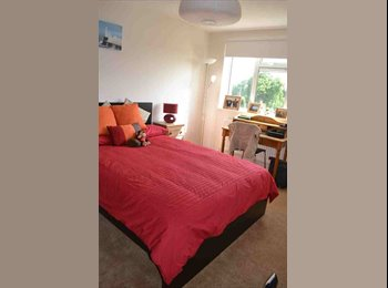 EasyRoommate UK - Large double room to let in spacious, modern flat - Woodford, London - £650