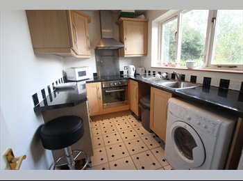 EasyRoommate UK - GOOD SIZED DOUBLE ROOM - Lower Earley, Reading - £495