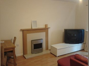 EasyRoommate UK - Single spacious room near to business park - Hatfield, Hatfield - £400
