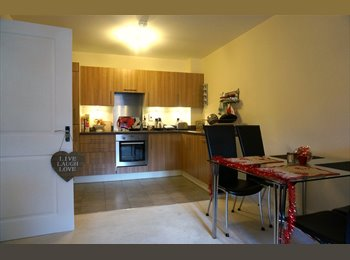 EasyRoommate UK - Lovely Double Room in NEW flat w/ bathrm&livingrm - Morden, London - £750