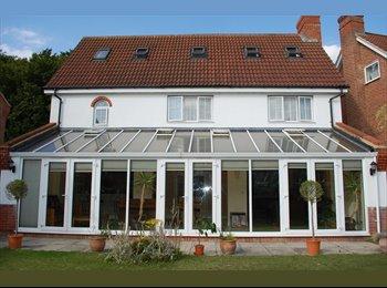 EasyRoommate UK - Prestige Six Bedroom Detached Property - Aston, Stevenage - £520