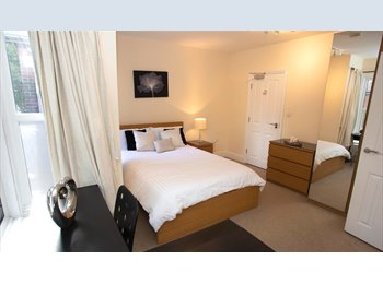 EasyRoommate UK - Spacious ensuite room - Colchester, Colchester - £585