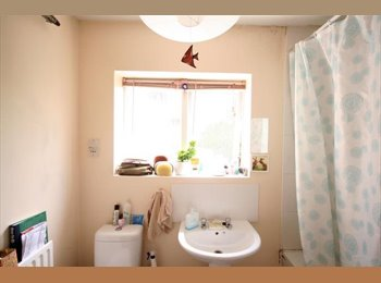 EasyRoommate UK - House Share in Southampton City (Polygon) - Southampton, Southampton - £300