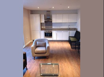 EasyRoommate UK - brand new 2 bedroom city centre apartment - Manchester, Manchester - £462