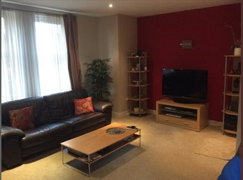 EasyRoommate UK - Large double bedroom in modern apartment - Fallowfield, Manchester - £450