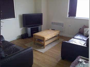 EasyRoommate UK - 26 year old professional - Highfield, Sheffield - £295