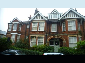 EasyRoommate UK - Cheap double rooms available in St Albans - St. Albans, St Albans - £347