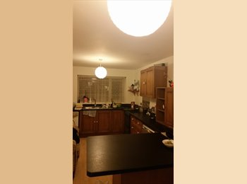 EasyRoommate UK - room for rent in Balby area - Balby, Doncaster - £282