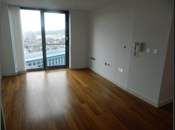 EasyRoommate UK - Modern city centre apartment  - Sheffield, Sheffield - £550