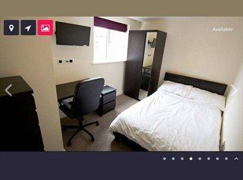 EasyRoommate UK - Luxury Modern Double Bedroom Available in Lboro - Loughborough, Loughborough - £403