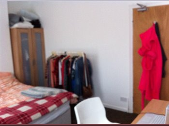 EasyRoommate UK - Spacious Double Room For Rent - Cathays, Cardiff - £300