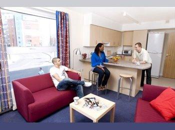 EasyRoommate UK - Central Quay, En-suite, 3/4 Bed, Lots of room! - Kelham Island, Sheffield - £107