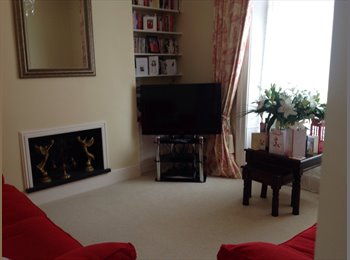 EasyRoommate UK - Double room in immaculate central house - Swansea, Swansea - £350