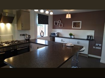 EasyRoommate UK - New house, beautiful large rooms. - Edgbaston, Birmingham - £495