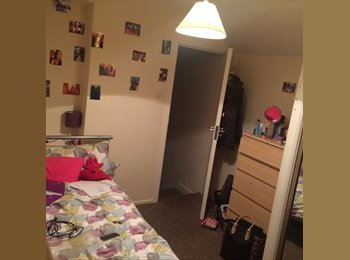 EasyRoommate UK - 3 girls look for 2 new tenants! - Cathays, Cardiff - £270