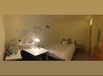 EasyRoommate UK - Double Room Available in 2 Bed Flat, December 2014 - Newcastle upon Tyne, Newcastle upon Tyne - £275