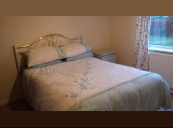 EasyRoommate UK - ROOMS AVAIL. HUNTINGDON, MON-FRI PROF. PEOPLE ONLY - Huntingdonshire, Huntingdonshire - £542