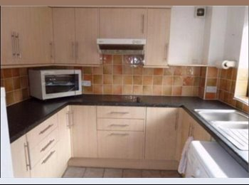 EasyRoommate UK - room available in a shared house - Hereford, Hereford - £400