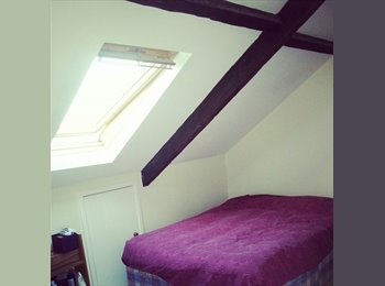 EasyRoommate UK -  1 large room in a 3 floor terrace house - Fenham, Newcastle upon Tyne - £260