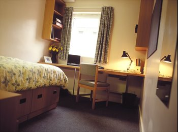 EasyRoommate UK - Rooms Available in the heart of the student area. - Manchester City Centre, Manchester - £503