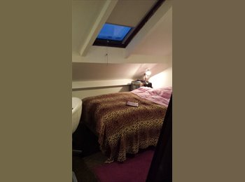 EasyRoommate UK - Lovely, Cosy room available. Great location - Broomhill, Sheffield - £450