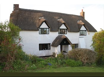 EasyRoommate UK - Large double room in thatched country house - Taunton, South Somerset - £350