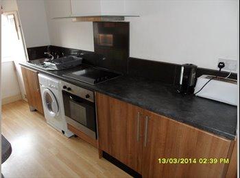 EasyRoommate UK - Huge room including bills - STUDENT PROFESSIONAL - Loughborough, Loughborough - £350