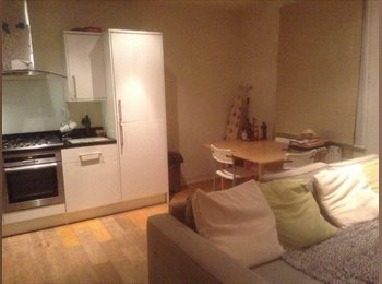 EasyRoommate UK - Double room for rent in Hampstead Heath - Hampstead, London - £900