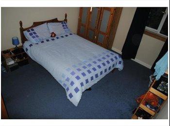 EasyRoommate UK - Double room for rent - Edinburgh Centre, Edinburgh - £350