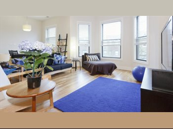 EasyRoommate US - Condo share in beautiful East Lakeview - Lakeview, Chicago - $990