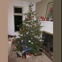 EasyRoommate US roomate for furnished Condo in the tree branches - Northgate, Seattle - $ 650 per Month(s) - Image 1