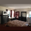 EasyRoommate US Single Bedroom Available in a gorgeous home - Newport, Jersey City - $ 1100 per Month(s) - Image 1