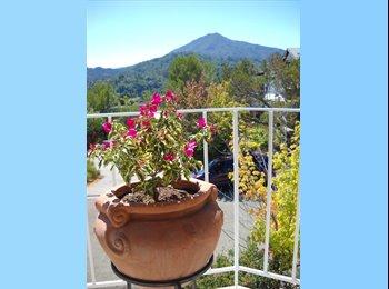 EasyRoommate US - Private Room in Beautiful Condo w/ Mt. Tam View - Napa, Northern California - $1500
