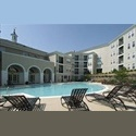 EasyRoommate US  $900 / 1411ft² - 1BR in Large Luxury 3BR/2BA Con - Arlington - $ 900 per Month(s) - Image 1