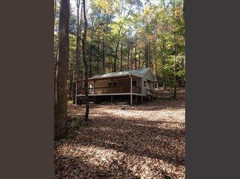 EasyRoommate US - Cabin for rent - Asheville, Other-North Carolina - $700