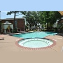 EasyRoommate US Room available at Midtown/Medical Center - Midtown, Inner Loop, Houston - $ 400 per Month(s) - Image 1