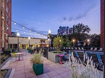 EasyRoommate US - GREAT room in luxury Downtown Stamford building - Stamford, Stamford Area - $1350