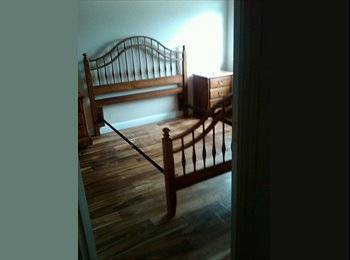 EasyRoommate US - Mature female telecommuter seeking housemate - South Austin, Austin - $800