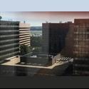 EasyRoommate US Crystal City Roommate, Nov rent $500 - Arlington - $ 1150 per Month(s) - Image 1