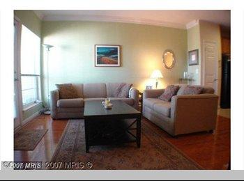 EasyRoommate US - 2 Rooms Available in Condo! WALK TO METRO - Alexandria, Alexandria - $1000