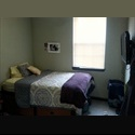 EasyRoommate US 4050 Lofts Female MONTH OF DEC. PAID - North Tampa, Tampa - $ 614 per Month(s) - Image 1