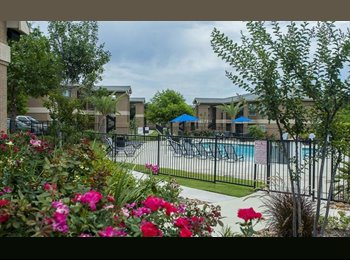 EasyRoommate US - $424 College Edge apartment WALK TO BLINN - Bryan, Bryan - $424