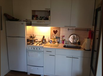 EasyRoommate US - Bright and spacious 1 bed in West Village - West Village, New York City - $1400