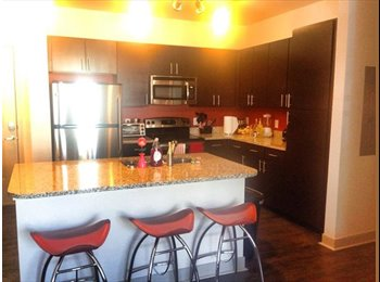 EasyRoommate US - Room for rent at The District at Campus West - Fort Collins, Fort Collins - $654