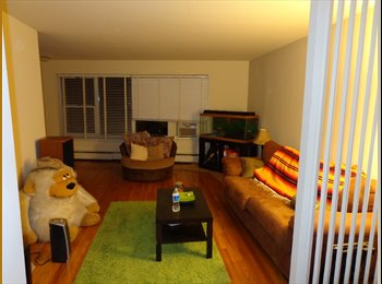 EasyRoommate US - Room available in BEAUTIFUL 2BR/1BA 800 sq ft apt - Silver Spring, Other-Maryland - $725
